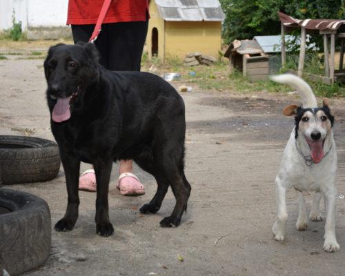 Soe und Maxi