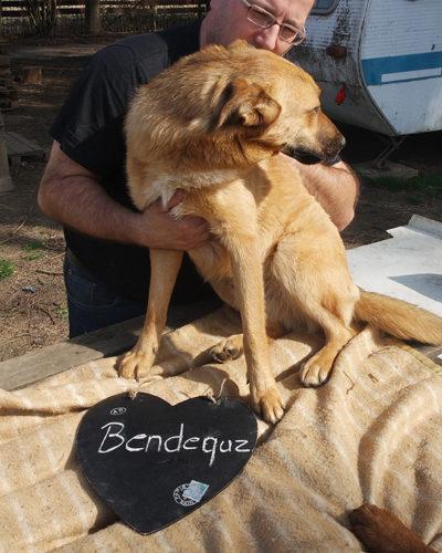 bendeguez_2017-01-22_01
