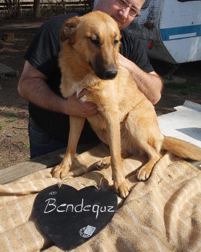 bendeguez_2017-01-22_02