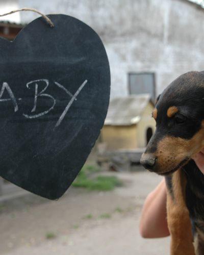 baby_2018-05-11_10