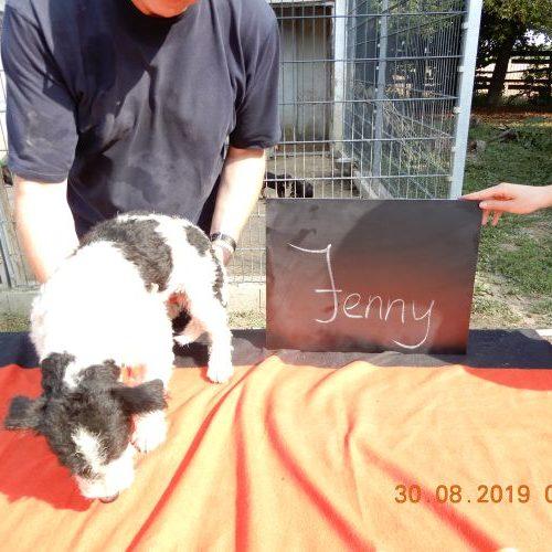 jenny_2019-08-30_01