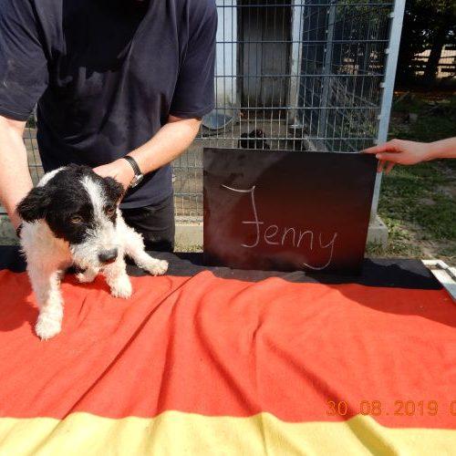 jenny_2019-08-30_03