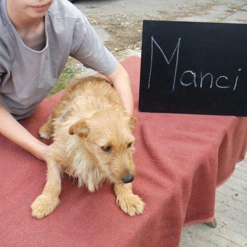manci_2021-08-10_01